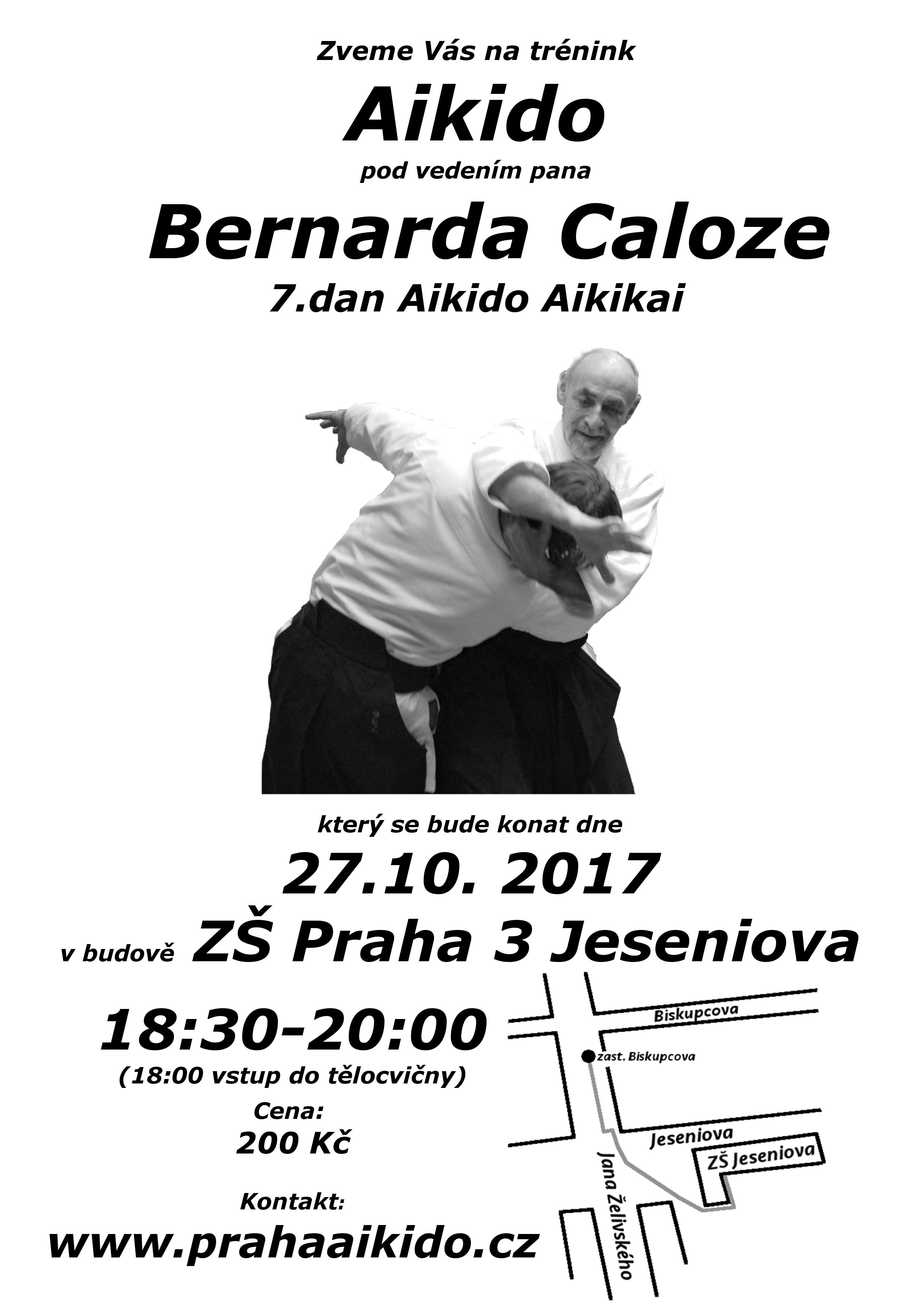 Caloz-Plakat-2017-10